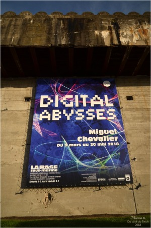 blog-dsc_43693-digital-abysses-miguel-chevalier-bdx-bacalan.jpg