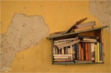 BLOG-DSC_42977-livres halle Rions