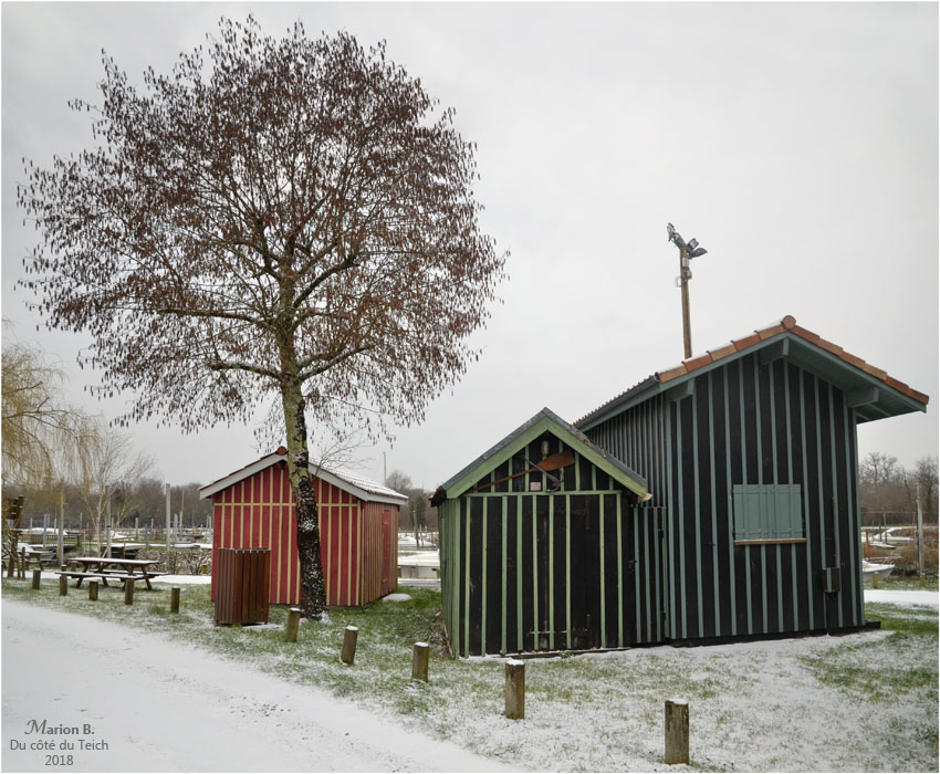 blog-dsc_43199-200-neige-petit-port-biganos.jpg