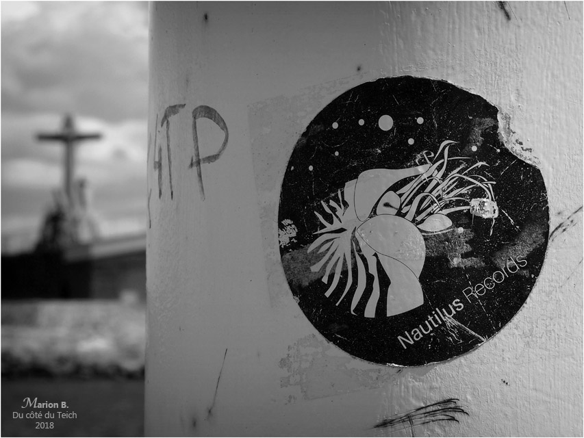 blog-p4141504-nautilus-records-et-monument-disparus-en-mer-arcachon-nb.jpg