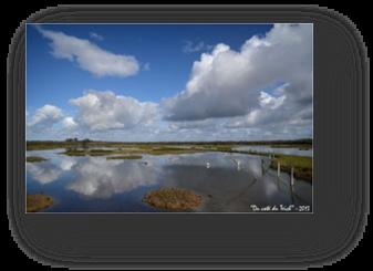image011-réserve ornithologique le Teich