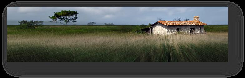 image030-Leyre le Teich