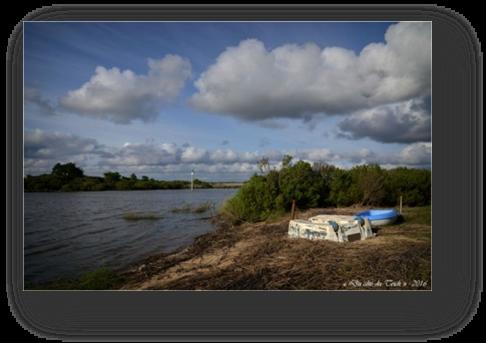 image031-Leyre le Teich