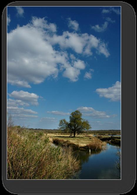image032-plaines du Teich