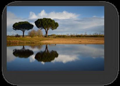 image033-bassin baignade le Teich