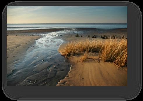 image035-rivages le Teich