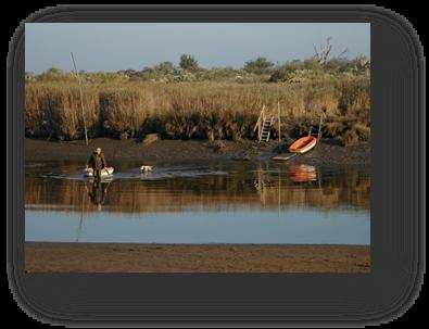 image054-chasseur Leyre le Teich