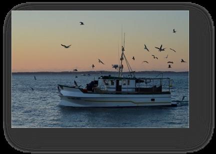 image059-bateau de pêche Arcachon