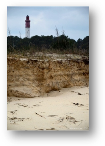 image071-érosion conche Mimbeau face phare Cap-Ferret