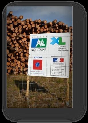 image079-aire stockage bois après tempête Klaus le Teich 2009