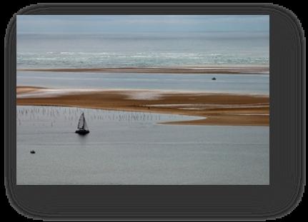 image090-banc d'Arguin vu depuis dune du Pilat