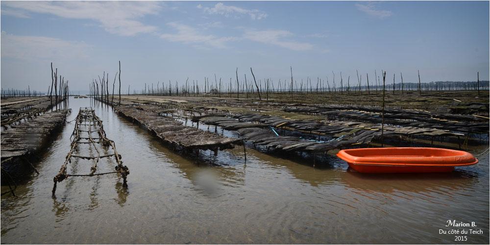 blog-dsc_35829-parcs-à-huîtres.jpg