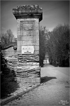 BLOG-DSC_43731-château Lamarque N&B