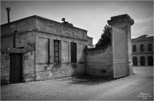 BLOG-DSC_43732-château Lamarque N&B