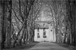 BLOG-DSC_43734-château Lamarque N&B