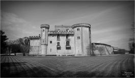 BLOG-DSC_43740-château Lamarque N&B