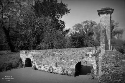 BLOG-DSC_43742-château Lamarque N&B