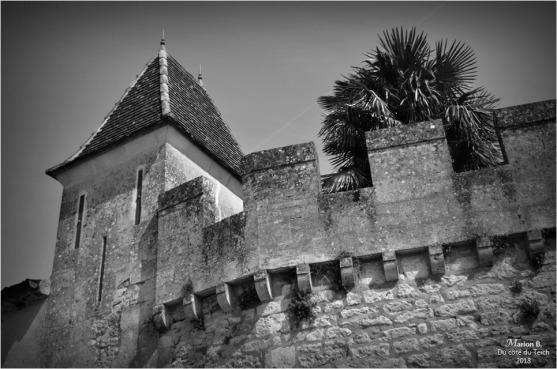 BLOG-DSC_43750-château Lamarque N&B