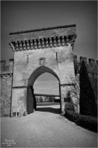 BLOG-DSC_43757-château Lamarque N&B