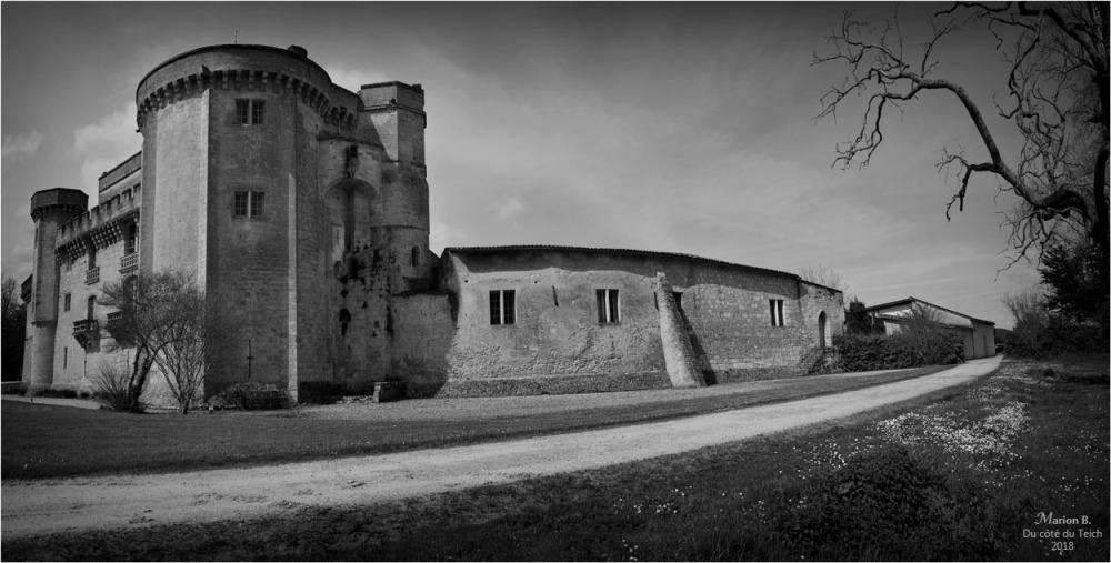 BLOG-DSC_43764-65-château Lamarque N&B