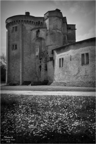 BLOG-DSC_43772-château Lamarque N&B