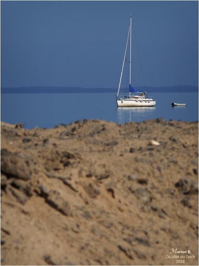 blog-p5201872-voilier-rivages-le-teich.jpg