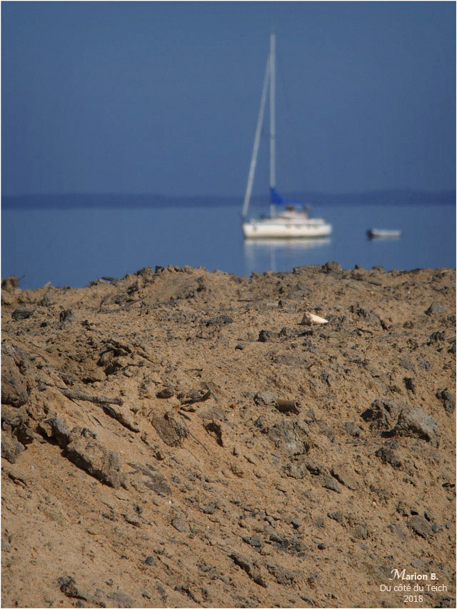 blog-p5201873-voilier-rivages-le-teich.jpg