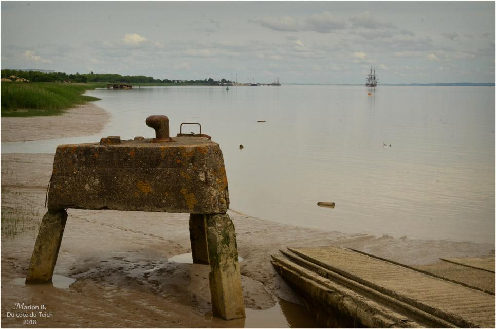 blog-dsc_43984-2-quai-pauillac-et-hermione-au-loin.jpg