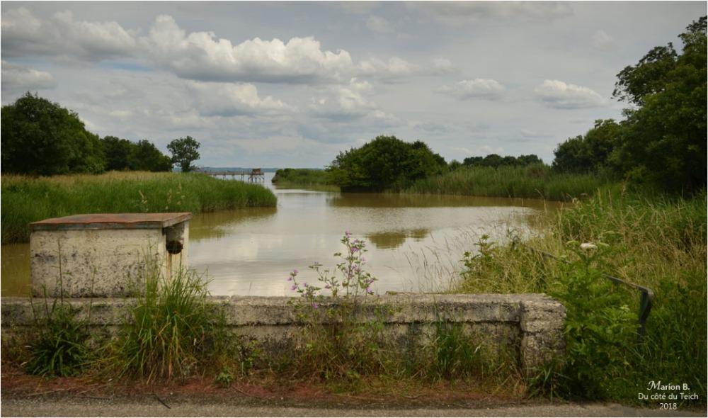 BLOG-DSC_44005-pont porte à flots estey d'un AS marais de Reysson