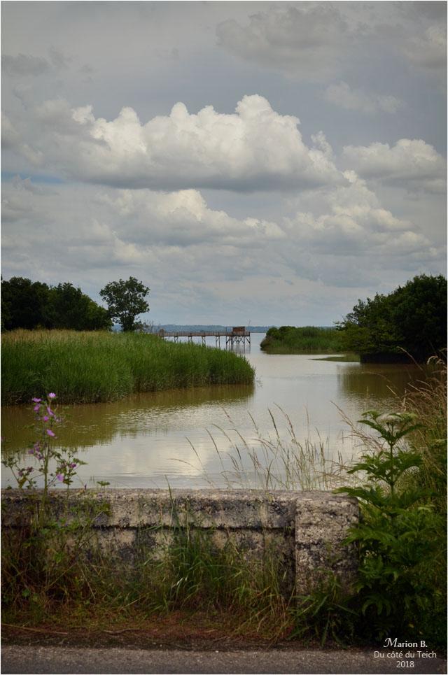 BLOG-DSC_44007-pont porte à flots estey d'un AS marais de Reysson