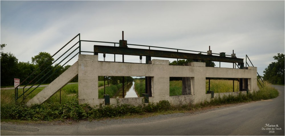 BLOG-DSC_44008-09-pont estey d'un AS marais de Reysson