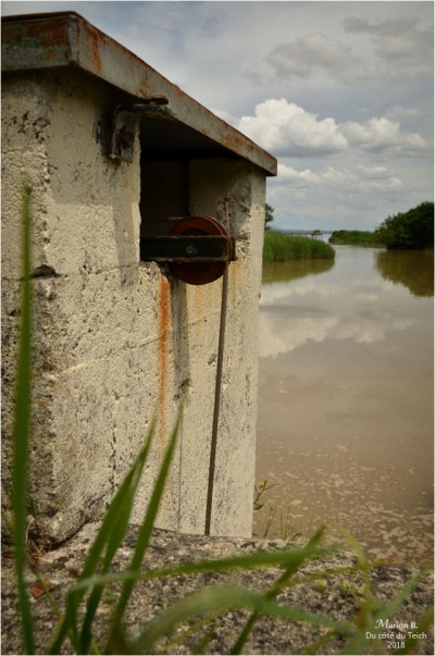 BLOG-DSC_44013-pont porte à flots estey d'un AS marais de Reysson