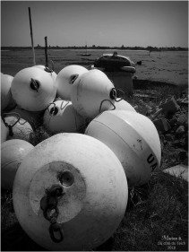 BLOG-P5041655-bouées corps-morts N&B