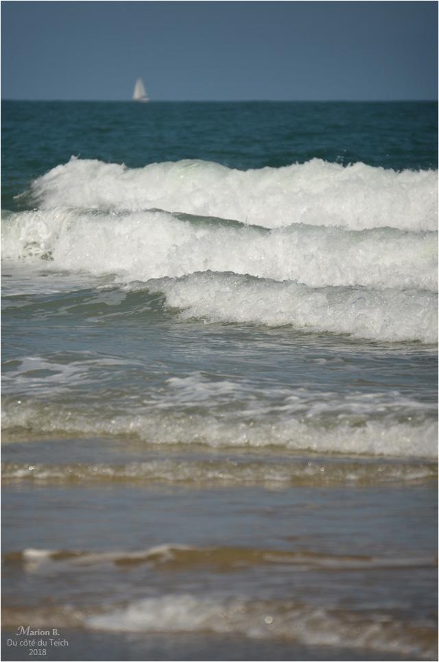 BLOG-DSC_44372-vagues et voilier Soulac