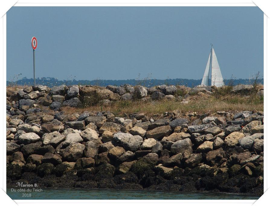 blog-p7253059-port-medoc.jpg