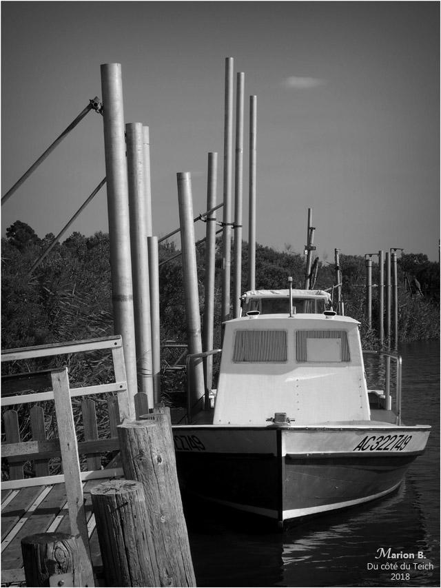 BLOG-P8113258-Leyre port des Tuiles Biganos N&B