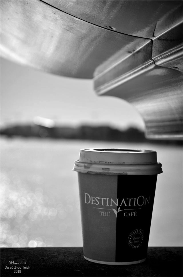BLOG-DSC_44838-Destination thé café pont de pierre Bordeaux N&B2