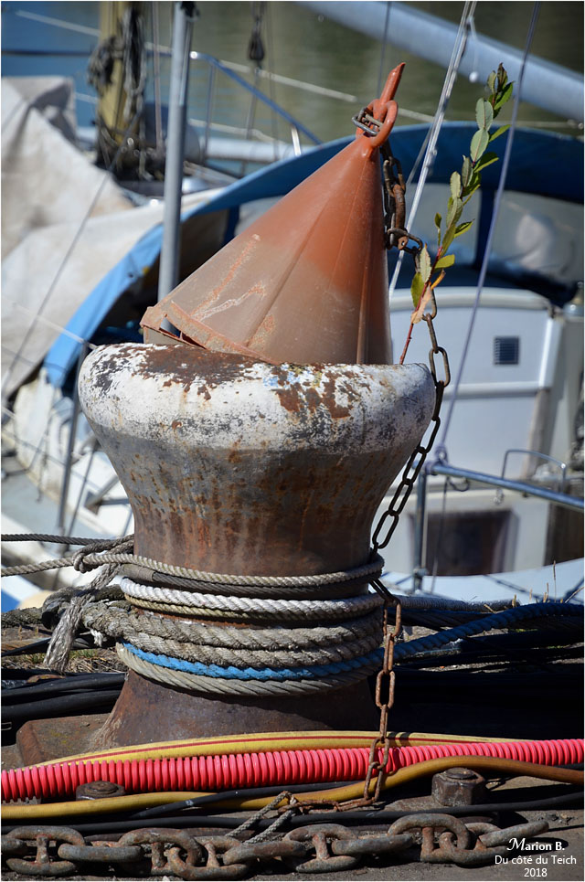 BLOG-DSC_44904-quai bassin à flot