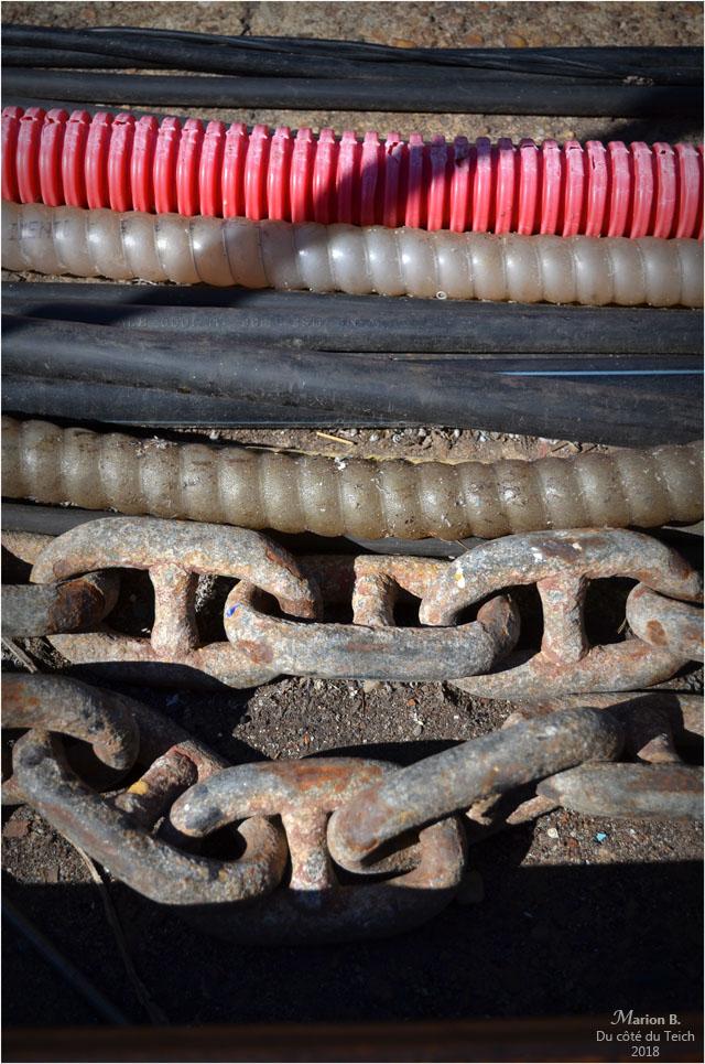 BLOG-DSC_44909-quai bassin à flot Bordeaux Bacalan