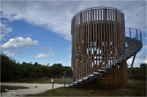 blog-dsc_45059-observatoire-réserve-ornitho-le-teich.jpg