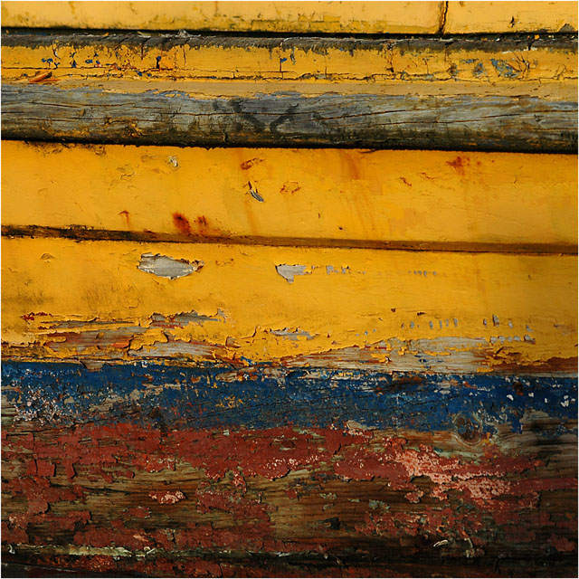 AVATAR DSC_2591-2-coque jaune