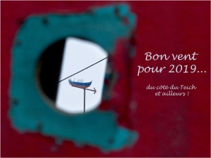 blog-p1010205-1-vieille-coque-et-girouette-bon-vent-2019.jpg