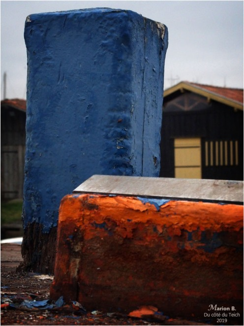 blog-p1010211-plate ostréicole et cabanes