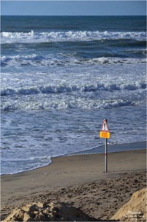 BLOG-DSC_45671-marée haute devant maisons jumelles Biscarrosse 2