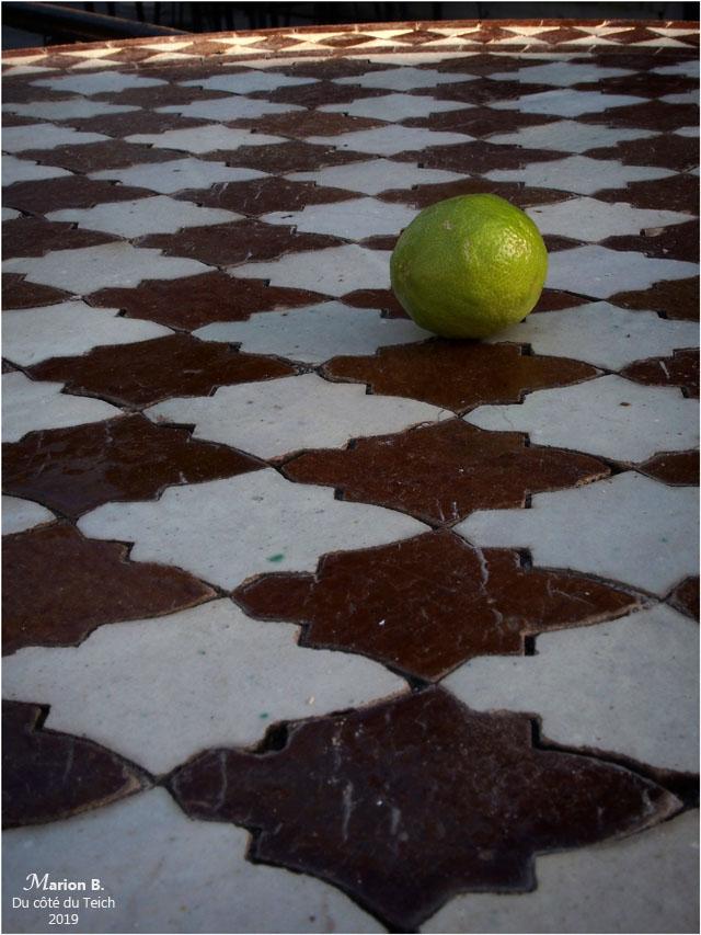 blog-p2210639-citron-table-mosaïque
