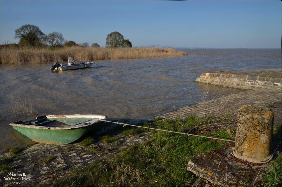 BLOG-DSC_46116-estuaire Gironde St Estèphe