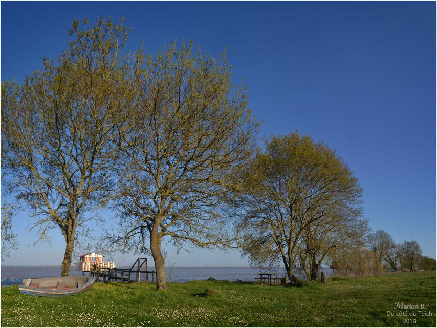 BLOG-DSC_46120-22-carrelet estuaire Gironde