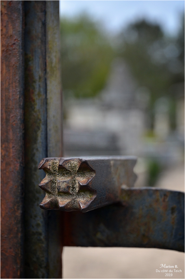 BLOG-DSC_46187-portail cimetière église St Pierre de Mons