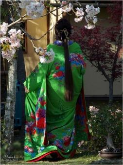 BLOG-P3301054-Hanami et Kimono