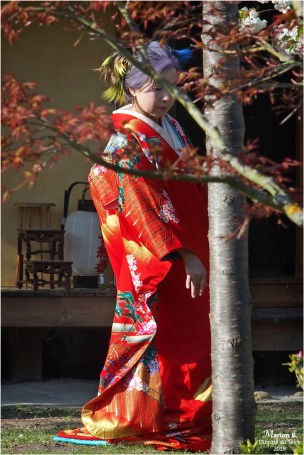 BLOG-P3301062-2-Hanami et Kimono
